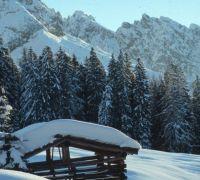 stadl-winter